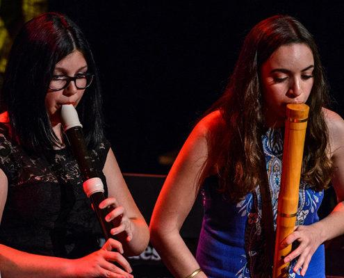 Flute-tenor-basse